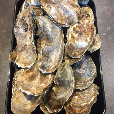 Oesters (Creuses)